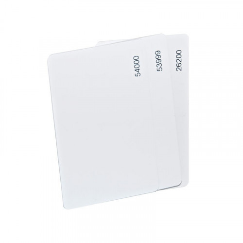 Numbered EM format ISO printable white card. read/write capability. Single card supplied.